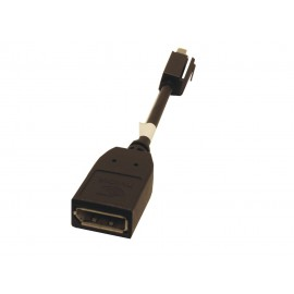 Adaptateur Mini DisplayPort vers DisplayPort